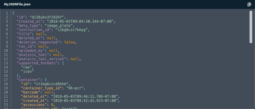 code-block-primitive-1